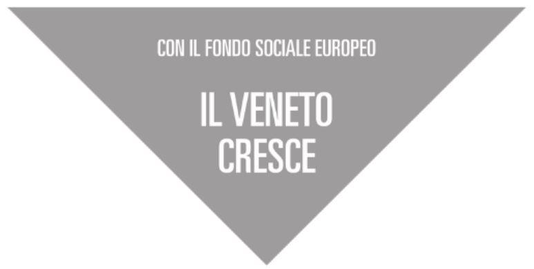 Veletta Regione Veneto grigia