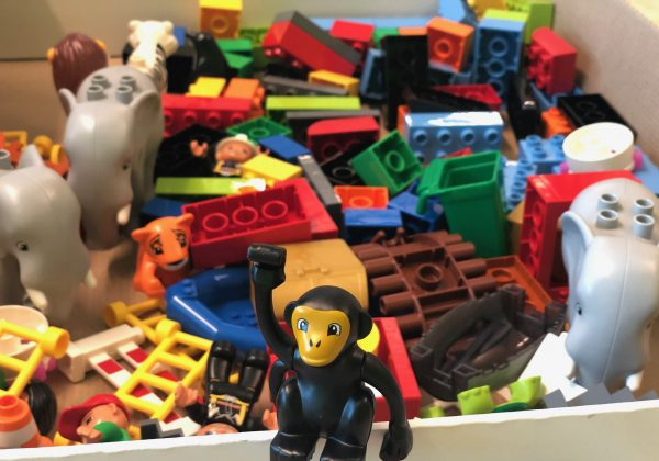 5 motivi per utilizzare il LEGO® SERIOUS PLAY® nel colloquio di orientamento